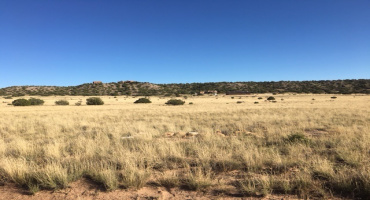 B4 L46 U14 Big Fork Road,Santa California City,Medanales,New Mexico 87579,Residential land,Big Fork Road,Santa California City,201704667